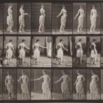 Eadweard Muybridge - Animal Locomotion, plansza 53, 1887
